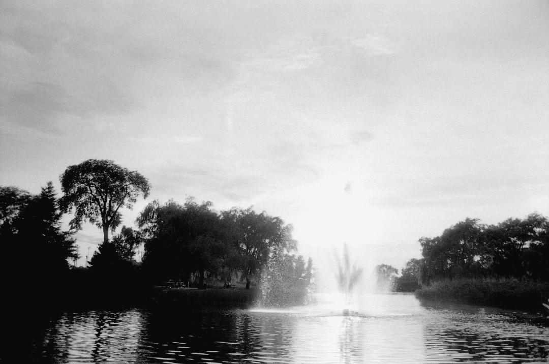 Série de photographies infrarouge. Le film utilisé est la pellicule SFX200 d'Ilford Une superbe vue de la fontaine du parc Jarry, à Montreal. Photographie: film noir et blanc numérisé sur papier.